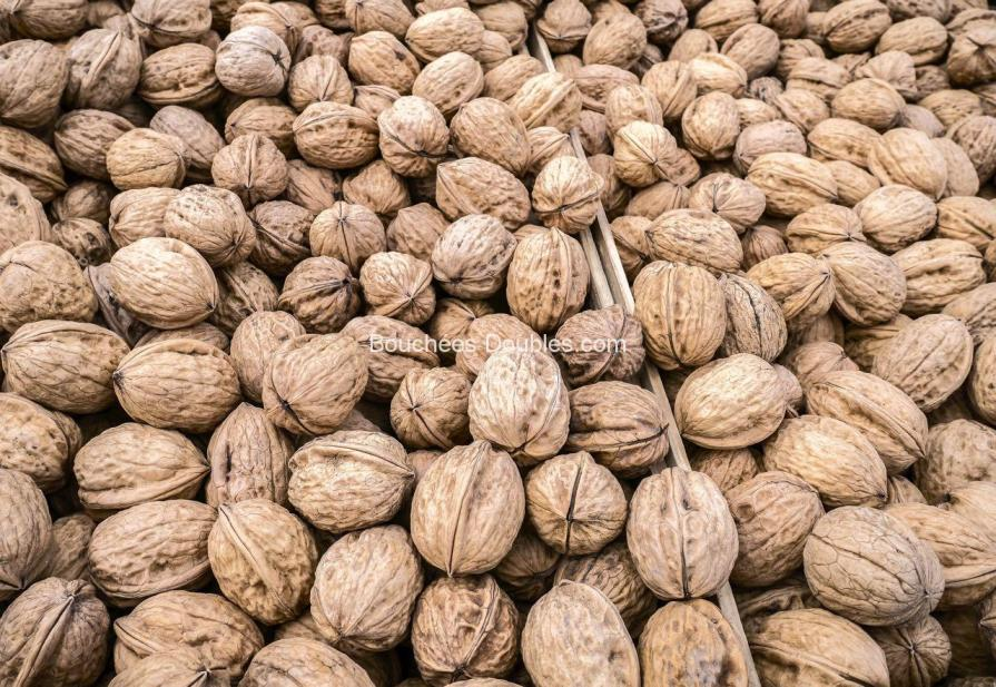 Nutrition : Les noix sont un super aliment pour nos intestins et notre côlon