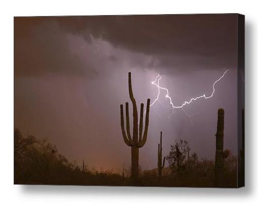 Saguaro Southwest Desert Lightning Air Strike Canvas Print