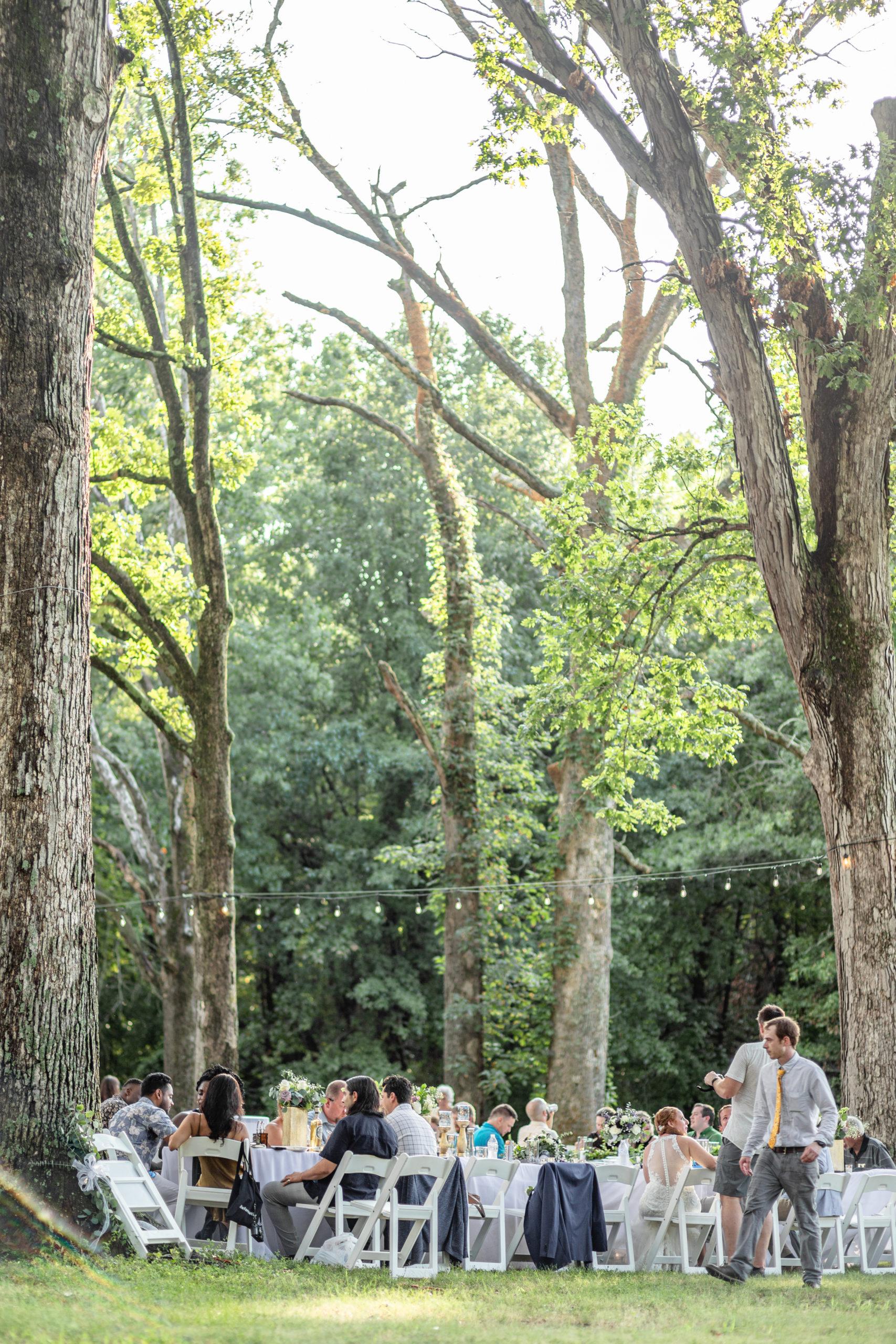 woodland wedding, southern illinois wedding, southern illinois wedding photography, rend lake wedding