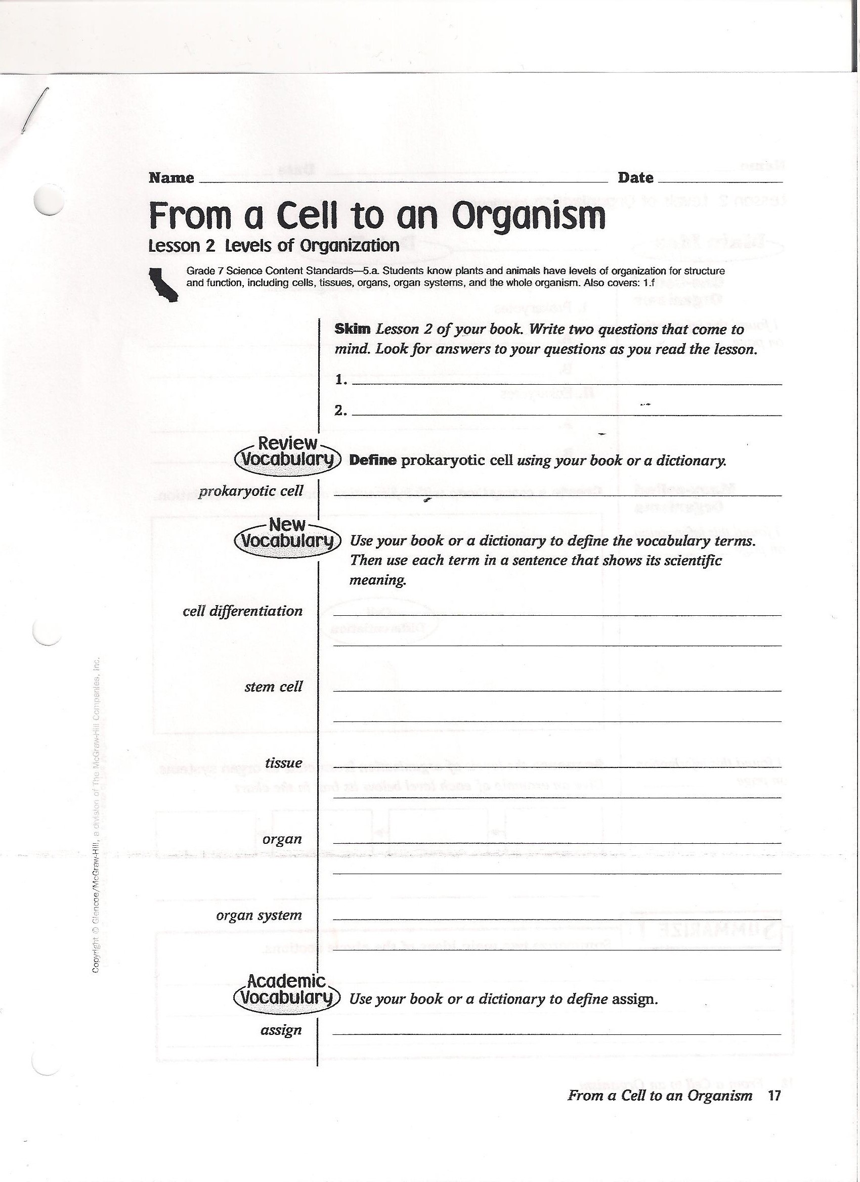 Worksheet Levels Of Organization Worksheet Worksheet Fun