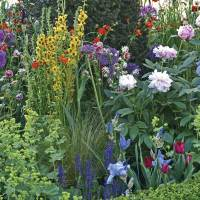 Comfortably Casual Cottage Gardens