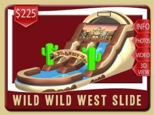 Wild West Water Slide Rental, Inflatable, Cowboy, Pool, Brown, Green