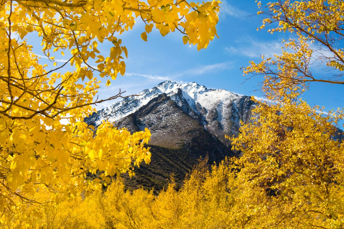 fall-colors-convict-lake-eastern-sierras