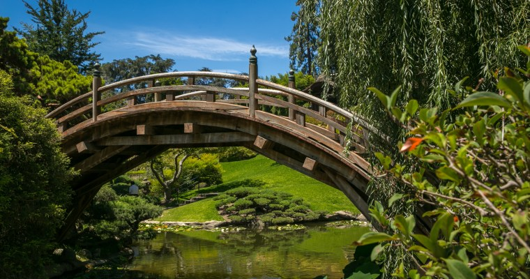 Exploring The Huntington Library | San Marino, California