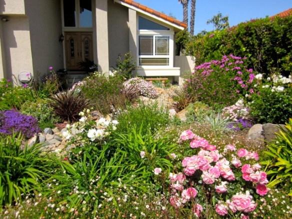 no grass front yard ideas | Bountiful Backyard on No Grass Backyard  id=72240