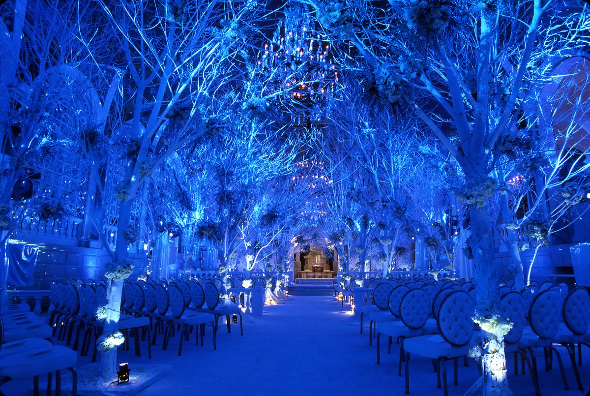 Blue Winter Wedding Ceremony