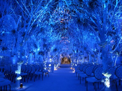 Blue Winter Wedding Ceremony