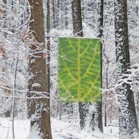 green leaf banner in winter