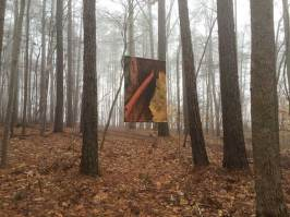 Braque Banner in fog