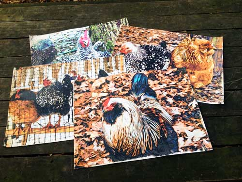 chicken-set-2-placemats