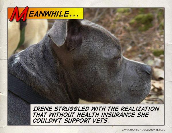 Irene worries about vets