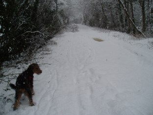 Rare snow in Pontesbury, Shropshire