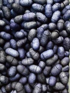 Κουκούλια Μπλε Ρουά 20τεμ 6Ε
