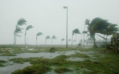 一番強い台風(中心気圧)の歴代ランキング!瞬間最大風速は85.3m/s!