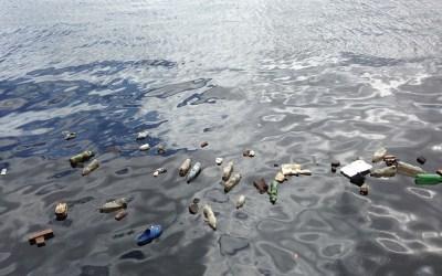 【環境汚染】深海6000メートルに36年前のプラスチック袋!沈んでいる理由・未来はどうなる?