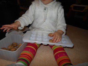 Activité Montessori avec des noix