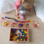 Grosses perles : jeux de tri