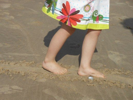 Pédagogie Montessori : la ligne