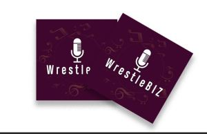 WrestleBIZ talk MITB 2020, AEW Double Or Nothing and more!