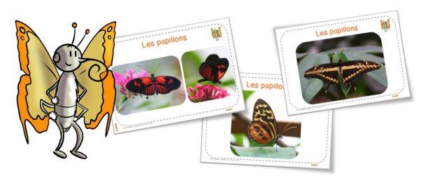 Diaporama_papillons_BDG_article