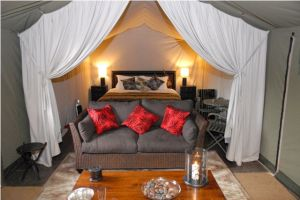 Pentre Mawr Boutique Guest House - Glamping in the luxurious Canvas Lodge