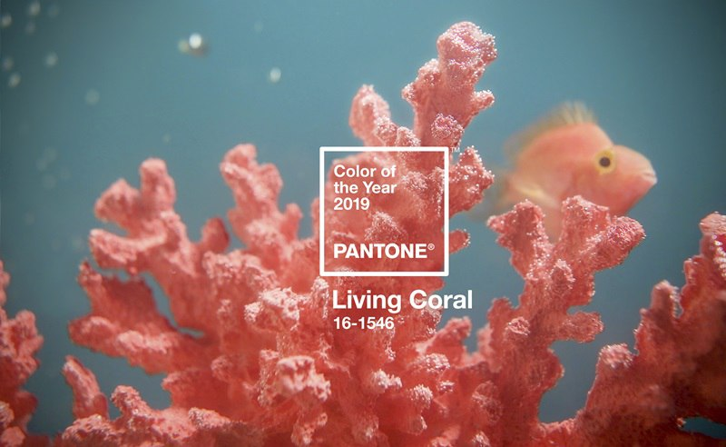 Boutique Retouching PRIMARY-PantoneCOY2019_coral_bluegreen_SWATCH-1 Color Harmonies And Color Of The Year 2019 - Living Coral