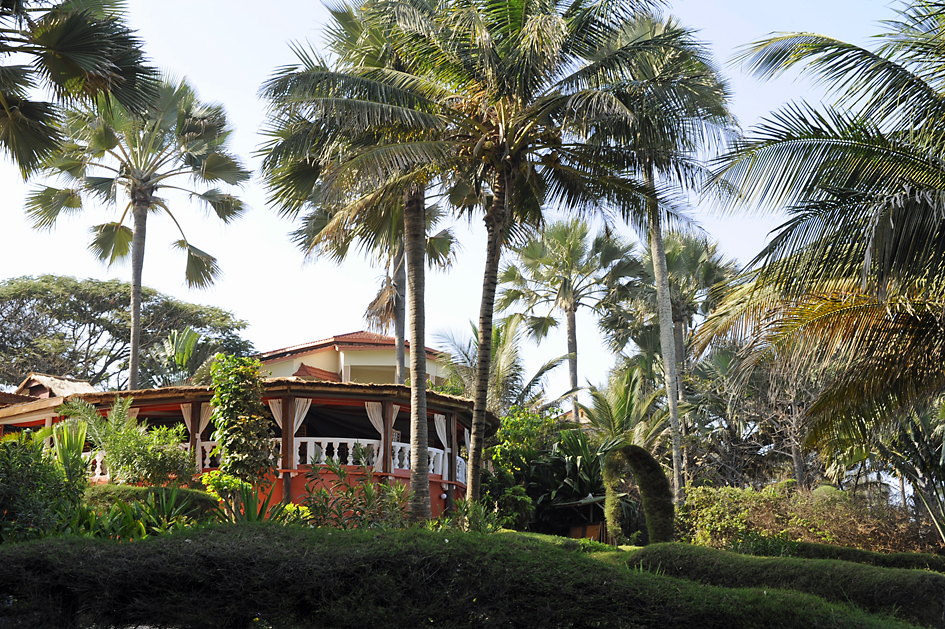 Great Summer Deals in The Gambia's Green Season