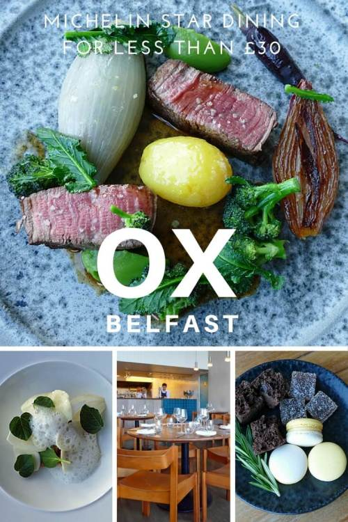 OX in Belfast, Michelin dining for less than £30