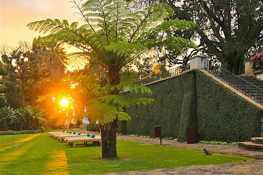 Gardens at Quinta da Casa Branca, Funchal, Madeira