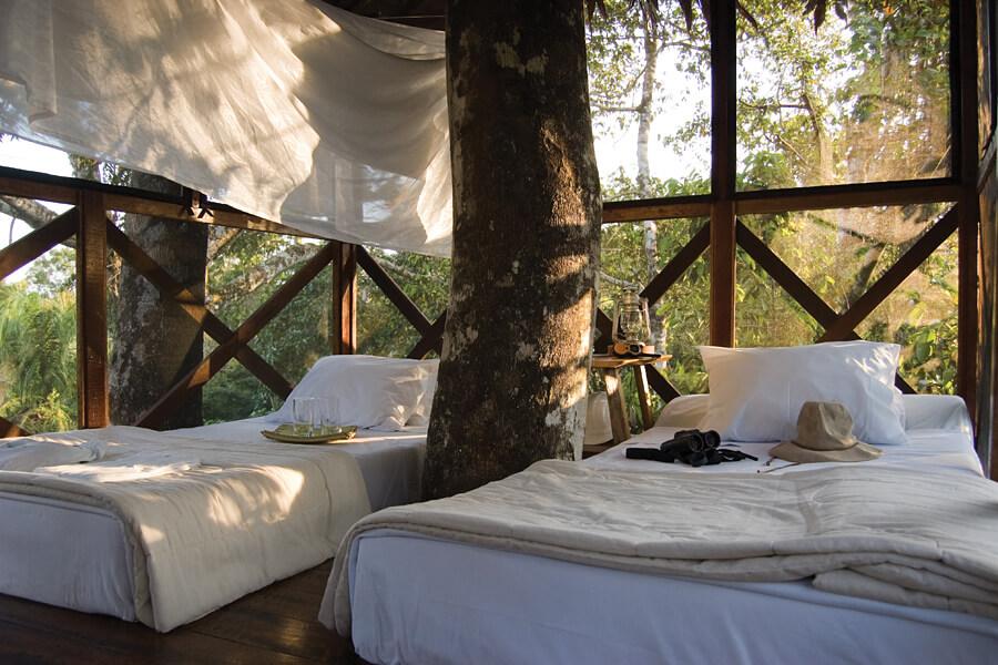 Inkaterra Reserva Amazonica Treehouse, Peru