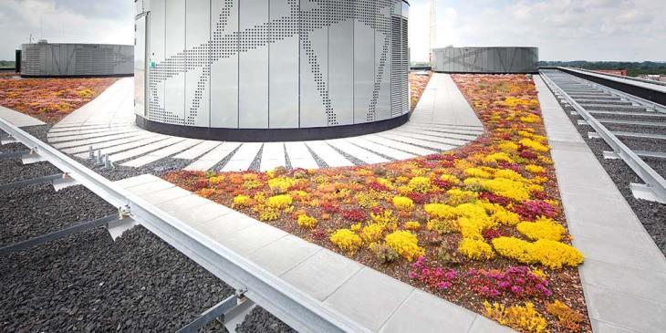 Norm voor begroeide daken NTA 8292