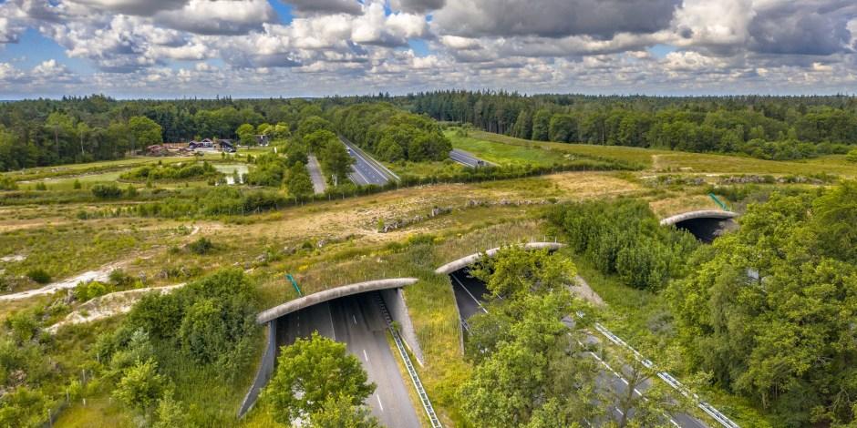 Buyer Group Circulaire Viaducten van start