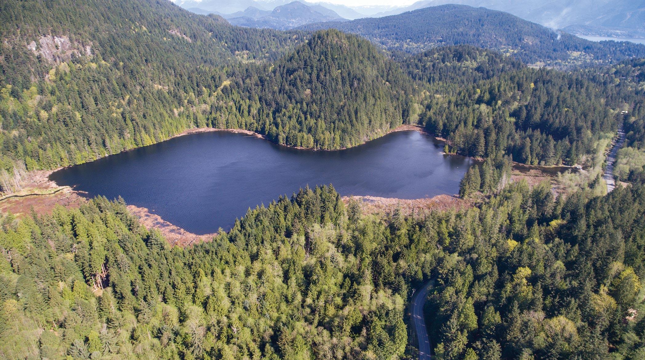A dark blue lake set in green hills covered in coniferous rainforest.