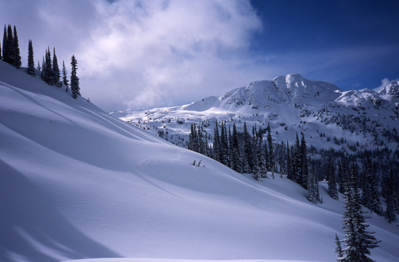 Selkirk Mountains-Great Northern Snow-Cat Skiing