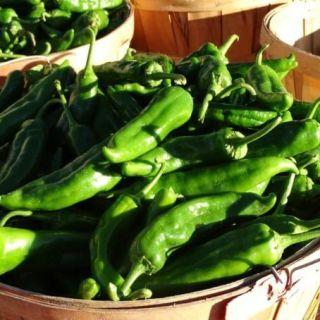 Hatch Green Chiles in wicker basket