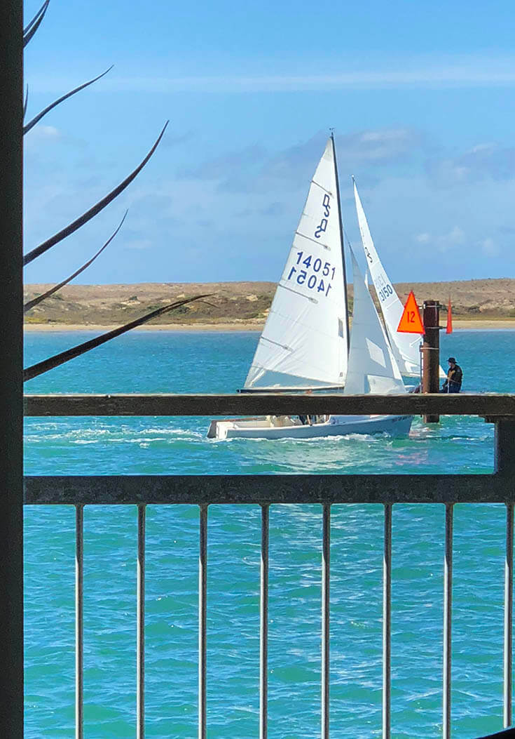 An exciting view of a sailboat race with the brightest blue water!