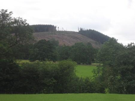 The balding Kemple End of Longridge Fell.