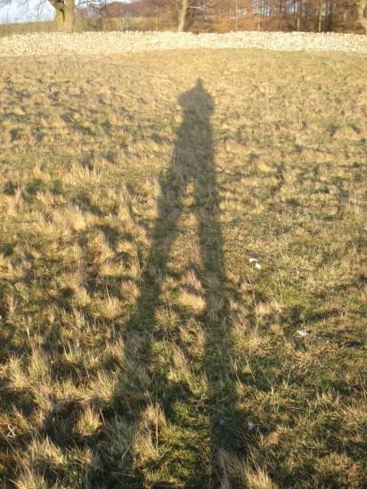 Evening Shadow.