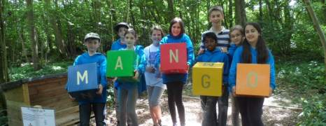 Team building outdoor learning