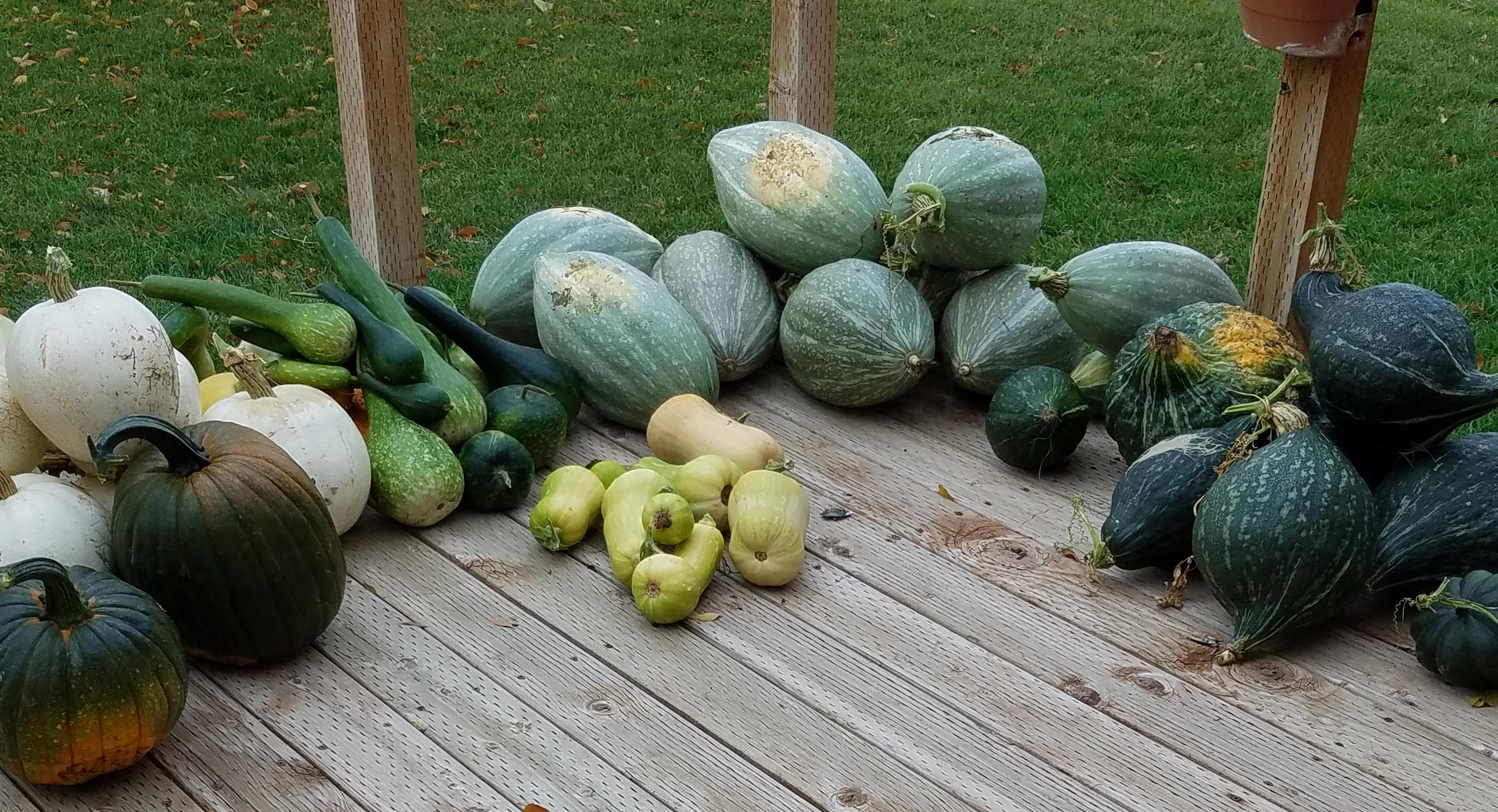 20181004_161729-crop
