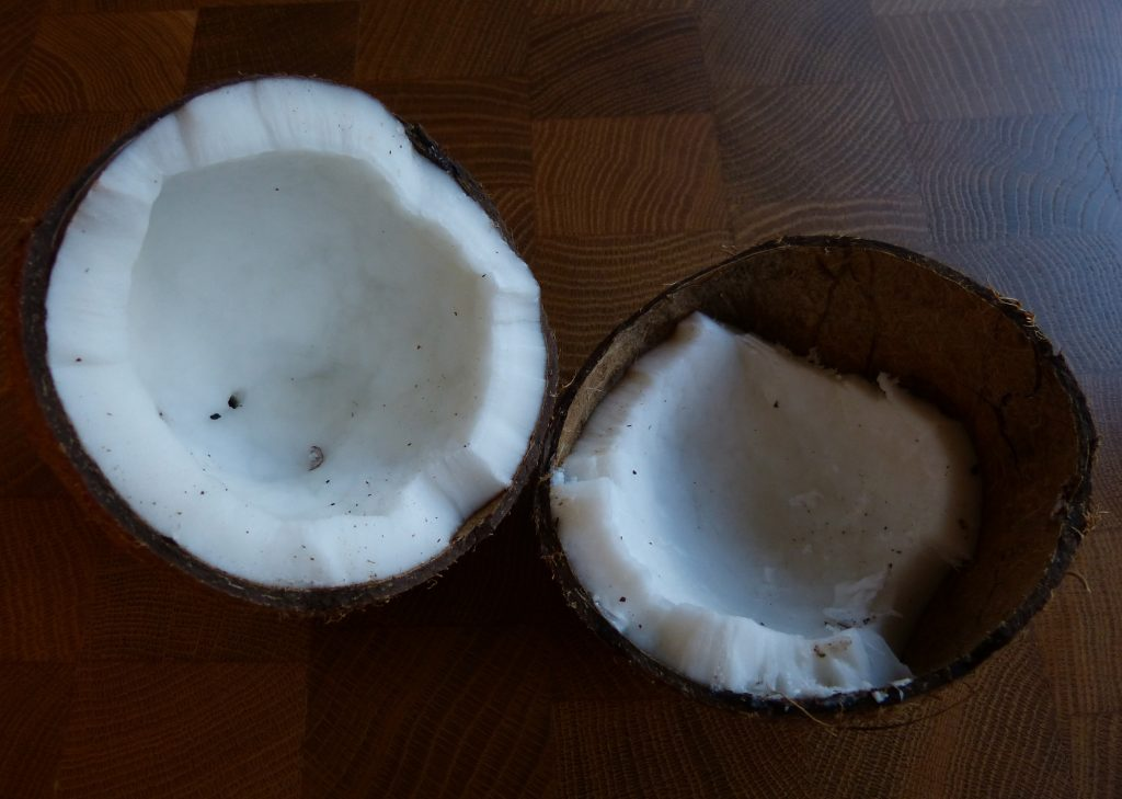 L1050547 1024x729 - Kokosmilch selbstgemacht und ein Kokos-Schoko-Smoothie