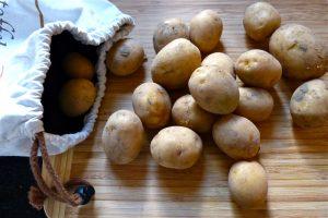 L1050508 300x200 - Kartoffeln