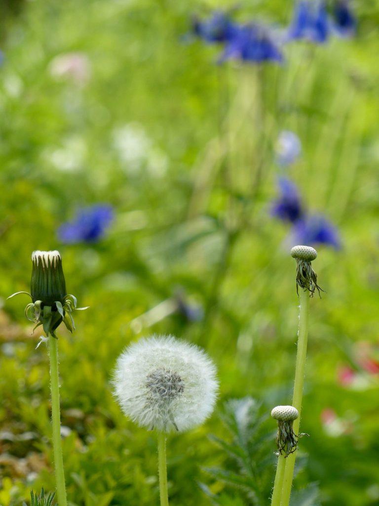 L1140818 1 768x1024 - Leben in Balance: Wie du Hindernisse überwindest und zu deiner positiven Eigenschaft machst