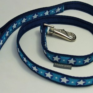 Blue Star Lead for your dog