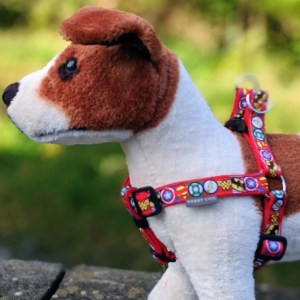 Fashion Dog Harnesses