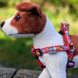 Fashion Dog Harnesses