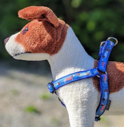 dachshund dog harness