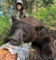 hunting black bear
