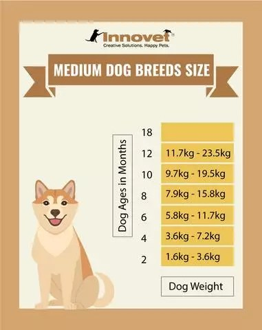 Within these responsibilities, engineers utilize their knowle. Puppy Development Stages Newborn Milestones Growth Charts