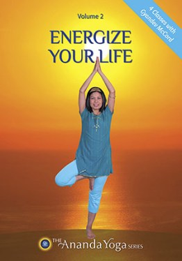 Energize Your Life DVD